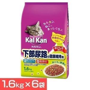 カルカンドライ 下部尿路の健康維持用 1.6kg カルカン 6袋セット(D) wannyan