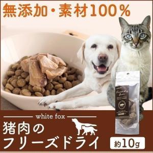 おやつ フード ドライフード 猪肉のフリーズドライ 犬・猫用 10g whitefox (D)(B)|wannyan