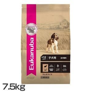 ユーカヌバ Eukanuba パピー ラム&ライス 子犬用 全犬種用 〜12ヶ月まで 7.5kg ロイヤルカナンジャポン (D) ドッグフード ペットフード 犬|wannyan