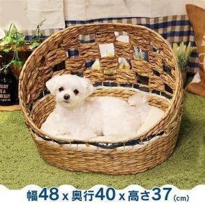 最終売り尽くし/ ペットべッド 夏用 犬ベッド 猫ベッド 犬用ベッド 猫用ベッド アジアンベッド マーレプリ―ト ドーム犬用 ドギーマン (D)|wannyan