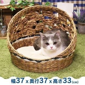 ペットべッド 夏用 犬ベッド 猫ベッド 犬用ベッド 猫用ベッド アジアンベッド マーレプリ―ト ドーム猫用 ドギーマン (D)|wannyan