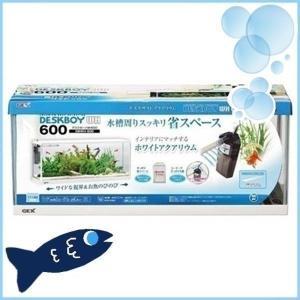 アクア 水槽 水槽セット 60 おしゃれ セット 5点セット ガラス 熱帯魚 観賞魚 ジェックス G...