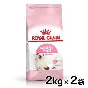 [正規品]ロイヤルカナン 猫用 キトン36 子猫用 2kg×2 (D) 猫キャットフード 猫用 フード 猫:予約品 《1月下旬入荷予定》 wannyan