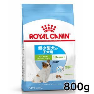 [正規品]ロイヤルカナン 犬 エクストラスモール ジュニア 800g(超小型犬 子犬用 ドッグフード)(D)(AA)※|wannyan