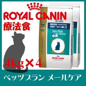 ロイヤルカナン 猫 ベッツプランメールケア 4kg 4袋セット 食事療法食 成猫用キャットフード 猫用 フード 食事療法 猫|wannyan
