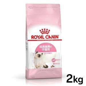 (セール)[正規品]ロイヤルカナン 猫用 キトン36 子猫用 2kg (D) 猫キャットフード 猫用 フード 猫