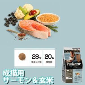 プロネイチャーホリスティック成猫サーモン&玄米340g(AA)(TC)キャットフード 猫用 フード 猫|wannyan