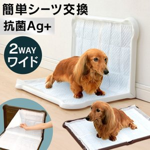犬 トイレ おしゃれ かわいい シーツぴたっとトレー ワイド P-SPTW アイリスオーヤマ(ピタッと ペット 白 茶 ブラウン ホワイト ワイド)|wannyan