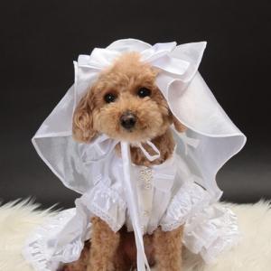 【送料無料】結婚式や記念日に愛犬のためのベール付きウェディングドレス☆|wanpla