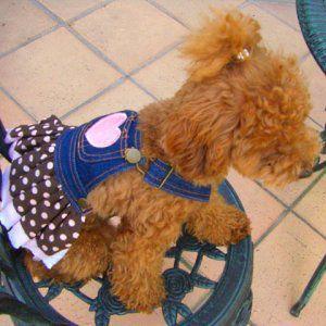 【ダックスファン掲載】犬のデニムスカート【PolkaDot ドレス】犬服/犬の洋服/ペット服/ドッグウェア|wanwan3dogs