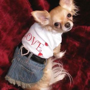 犬のデニムスカート【Love デニム】犬服/犬の洋服/ペット服/ドッグウェア|wanwan3dogs