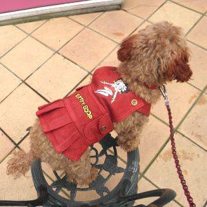犬のデニムスカート【BETTY BOOP Red Denim Dress】犬のデニムスカート/レトロ/ベティちゃん/ベティグッズ/犬服|wanwan3dogs