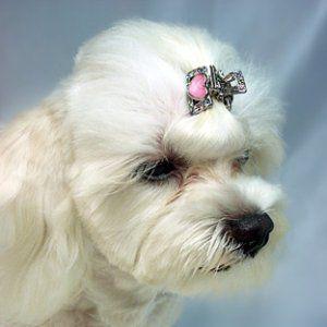 犬のヘアーアクセサリー【ヘアークリップ-ハート】ペットアクセサリー/ラインストーン/犬グッズ/犬用品 wanwan3dogs