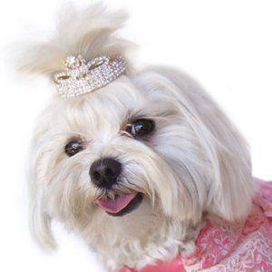 犬のヘアーアクセサリー【flower-tiara】ティアラ/ペットアクセサリー/ラインストーン/犬グッズ/犬用品 wanwan3dogs