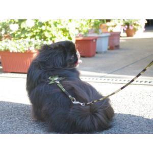 着脱ラクラクなコンパクトタイプ♪犬のハーネスとリードのセット【カモフラスター】 wanwan3dogs 05