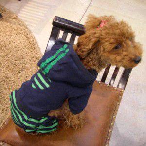 犬のジャンプスーツ【Green striped jumper】つなぎ/カバーオール/モンキーデイズ/犬服/犬の洋服 wanwan3dogs