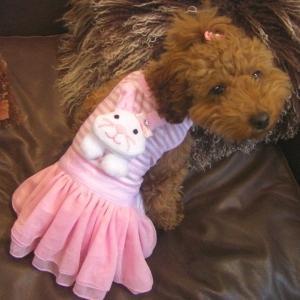 犬洋服_犬のカバーオール【Pink bunny カバーオール】 wanwan3dogs