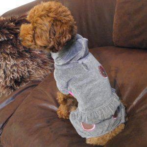 犬のオールインワン【LITTLE BRATS_グレー】つなぎ/カバーオール/犬服/犬の洋服/ペット服 wanwan3dogs