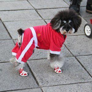 犬のジャージ【PP Terry ジャンパー_レッド】犬用ジャージ/犬のつなぎ/犬のカバーオール/犬服/犬の洋服/ペット服 wanwan3dogs