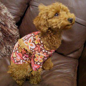 フリンジが可愛い民族衣装のようにド派手な犬のウエスタンTシャツ【ポカホンタス】犬服/犬の洋服/ペット服 wanwan3dogs