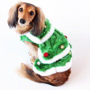 犬のコスチューム【クリスマスツリー】|wanwan3dogs