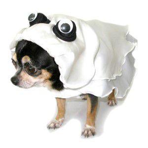 犬のコスチューム【ゴースト】|wanwan3dogs
