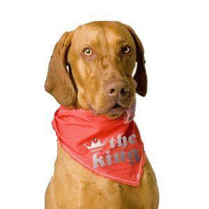 犬のバンダナ【The king】ドッグバンダナ/犬用バンダナ/犬グッズ/犬用品|wanwan3dogs