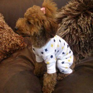 犬のパジャマ【Yellow stars】犬用パジャマ/カバーオール/ペットのパジャマ/犬服/犬の洋服 wanwan3dogs