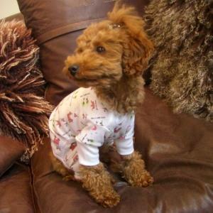 犬のパジャマ【Princess】犬用パジャマ/カバーオール/ペットのパジャマ/犬服/犬の洋服 wanwan3dogs