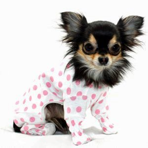 犬のパジャマ【Strawberry】犬用パジャマ/カバーオール/ペットのパジャマ/犬服/犬の洋服 wanwan3dogs