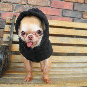犬のパーカー【GOOBY オリジナル フリース ベストパーカー_ブラック】ネームタグ付き/リード取り付け可能/犬 服/犬 フリース|wanwan3dogs
