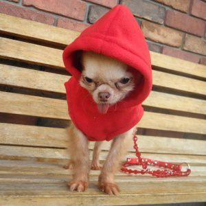 犬のパーカー【GOOBY オリジナル フリース ベストパーカー_レッド】シンプルな無地/ネームタグ付き/リード取り付け可能/犬 服/犬 フリース|wanwan3dogs