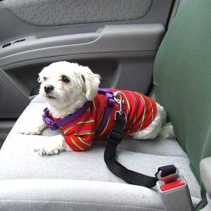 犬 シートベルト【犬用シートベルト】ペット|wanwan3dogs