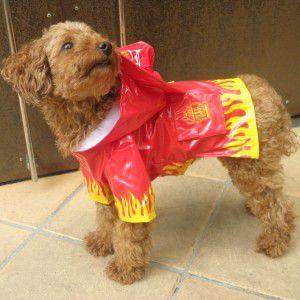 犬のレインコート【Fire Chief】ペットのレインコート/雨具/レイングッズ/犬のコスチューム/消防士コスチューム|wanwan3dogs