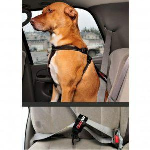 犬 シートベルト【犬用シートベルト リストレイント】ペット シートベルト/EZY DOG/イージードッグ|wanwan3dogs