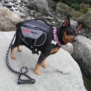 犬用アウトドアリュック【Summit Backpack】Mサイズ/犬のアウトドア用品/犬用アウトドアバッグ/犬用品/犬のリュック|wanwan3dogs