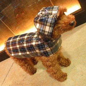 犬のレインコート【Levi】チェック/マジックテープ/犬 レインコート/雨具/プーチアウトフィッターズ|wanwan3dogs