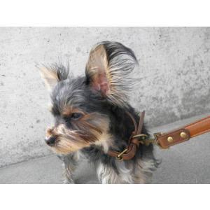 犬の首輪とリードのセット【Metro Metal】3色スタッズ/ペットの首輪/アンティーク調カラー/お散歩犬グッズ|wanwan3dogs|05