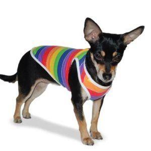 犬のタンクトップ【PP Rainbow】夏服/レインボー/サマータンク/ドゴ/DOGO|wanwan3dogs