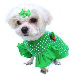グリーンドット柄が鮮やかな犬のTシャツ【Green polka dot】フリフリ付/苺アクセサリー付/犬服/犬の洋服/ペット服|wanwan3dogs