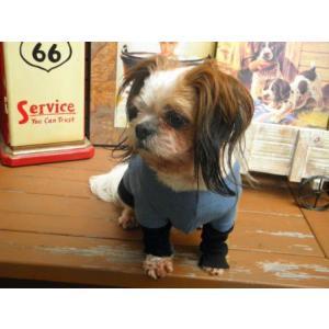 犬のTシャツ【Now and Zen】和柄/ペット用Tシャツ/犬服/犬の洋服/ペット服|wanwan3dogs|03