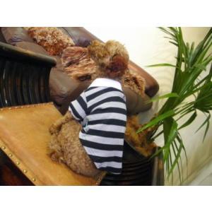 犬のポロシャツ【PP Black ボーダーポロ】DOGO/犬用ポロシャツ/ペット用ポロシャツ/犬服/犬の洋服/ペット服|wanwan3dogs|02