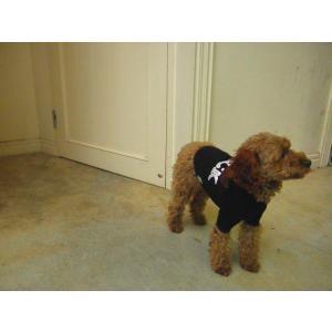 犬のTシャツ【I Luv Rock】スタッズ/犬服/犬の洋服|wanwan3dogs|05