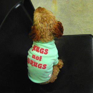 犬のTシャツ【Hugs not Drugs】タイダイ/ペット用Tシャツ/犬服/犬の洋服/ペット服 wanwan3dogs