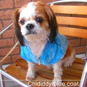 犬洋服_犬のコート【ChiDiddyBlue コート】|wanwan3dogs