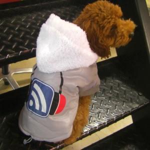 犬洋服_犬のジャケット【ヘッドフォン_ボンバー】|wanwan3dogs