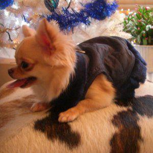 犬洋服_犬のダウンベスト【Navy vest coat ハーネス】|wanwan3dogs