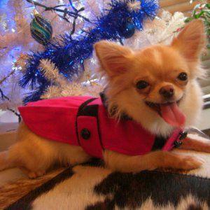 犬のコート【ホットピンク _プリーツ_ドレスコート】犬用コート/ペットのコート/犬服/犬の洋服|wanwan3dogs