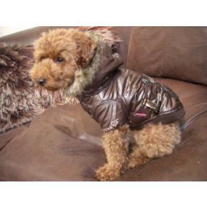送料無料♪犬のコート【EXPRESSO】犬用コート/ペットのコート/犬服/犬の洋服/Pinka holic|wanwan3dogs|02