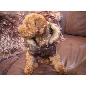 送料無料♪犬のコート【EXPRESSO】犬用コート/ペットのコート/犬服/犬の洋服/Pinka holic|wanwan3dogs|04